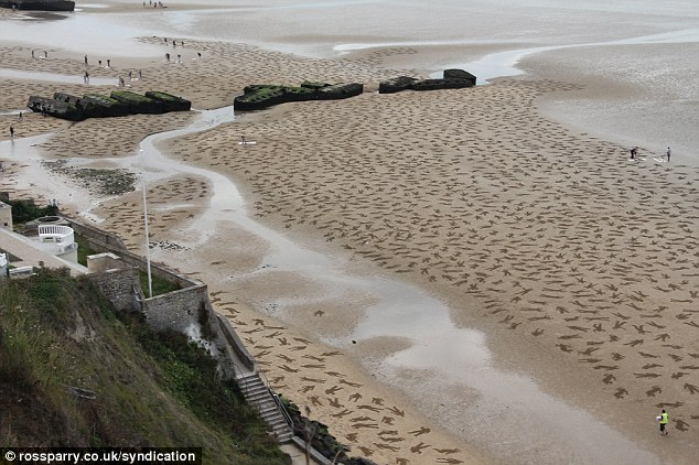 Reclaimed: The installation was designed so that the sea would wash over the bodies and wipe them from the beach in a moving reminder of the tragedy of war